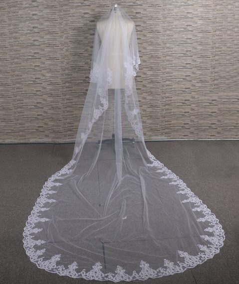 Abila Lace Edge Veil in White